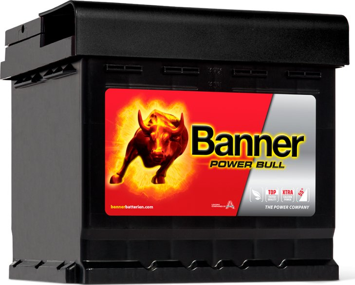 Аккумулятор Banner Power Bull P6009 (60Ah) фото
