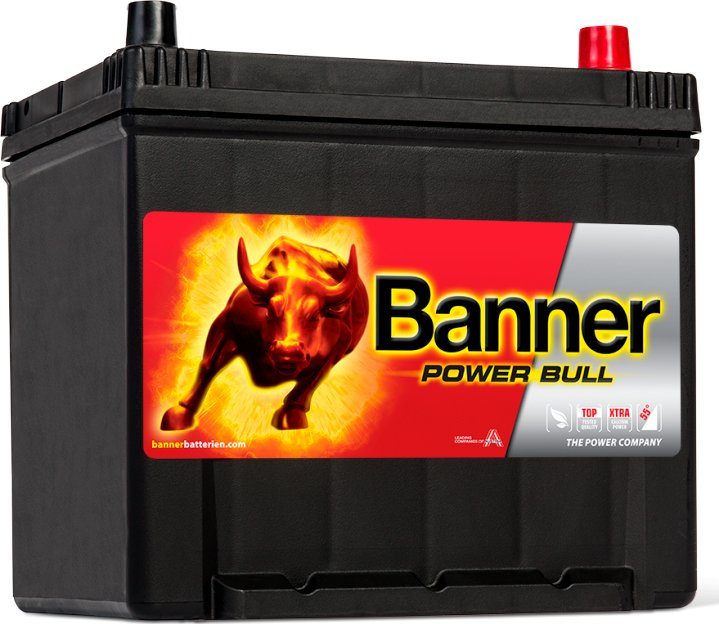 Аккумулятор Banner Power Bull P9505 (95Ah) фото