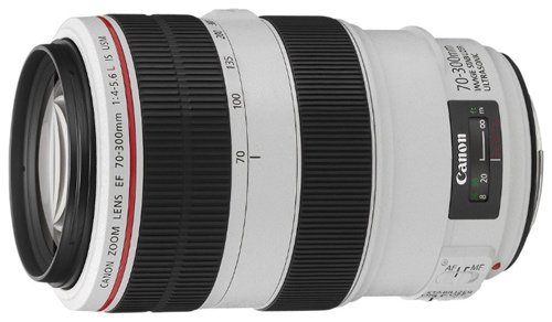 �������� Canon EF 70-300 f/4-5.6L IS USM