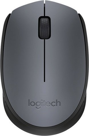 Компьютерная мышь Logitech Wireless Mouse M170 фото