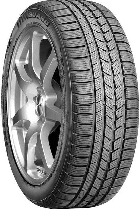 Зимняя шина Roadstone Winguard Sport 205/55R16 91T