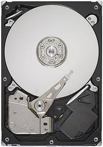 Жесткий диск Seagate Barracuda 7200.12 (ST250DM000) 250 Gb фото