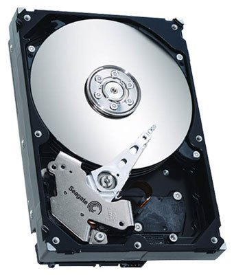 ������� ���� Seagate ST31000333AS 1000 Gb