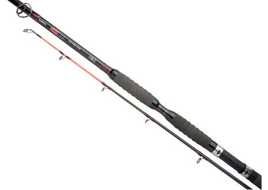 Спиннинг SHIMANO FORCEMASTER CATFISH 300H2