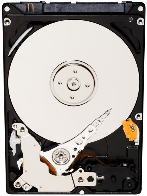 Жесткий диск Western Digital Blue (WD7500BPVX) 750 Gb фото