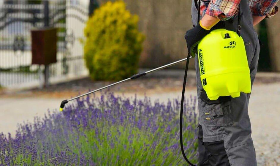 Садовый опрыскиватель - какую модель выбрать?